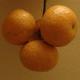 創作者 後山無籽砂糖橘 的頭像