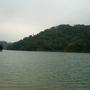 青青河邊草