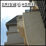daisyhome