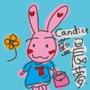Candice*晨