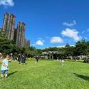 小額信貸利率最低 圖像