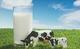 創作者 刷卡現金回饋 的頭像
