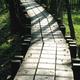 創作者 羅東林業文化園區 的頭像