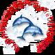 創作者 小海豚 的頭像
