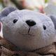 創作者 紫熊 的頭像