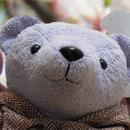 紫熊 圖像