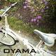 創作者 oyama1966 的頭像